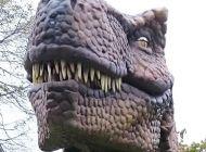 Tyranosaurus Beruška